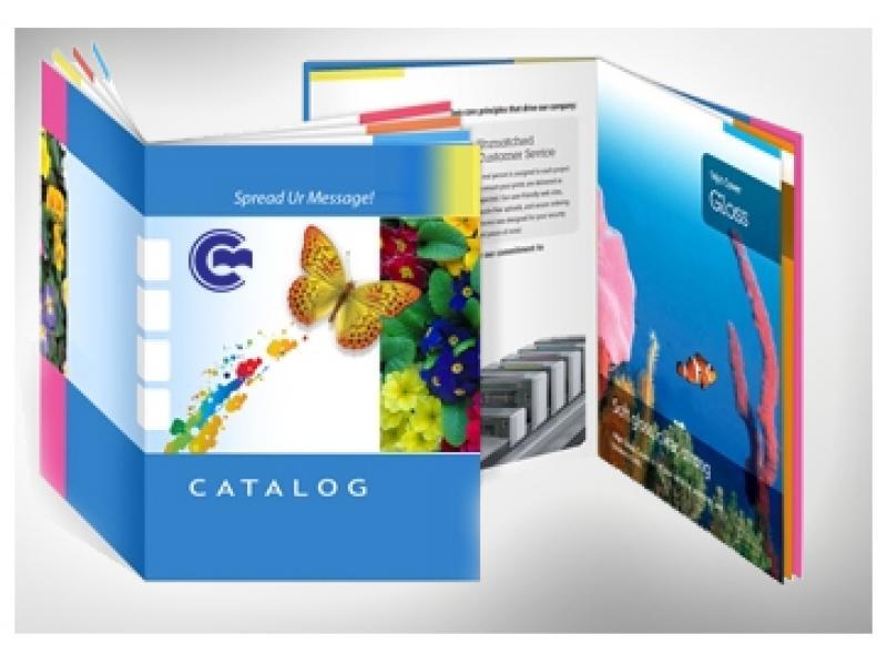 In catalogue giá rẻ, cam kết chất lượng
