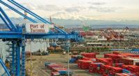 Công ty xuất nhập khẩu giá rẻ tphcm