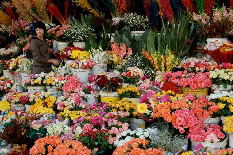 kinh nghiệm bán hoa tươi dịp tết