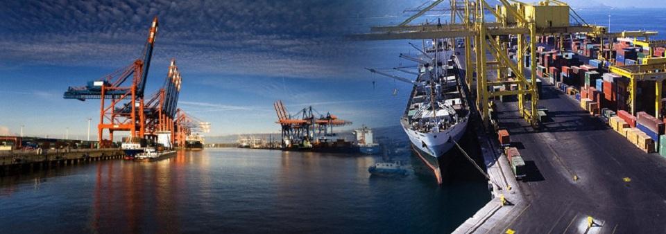 Công ty cung cấp dịch vụ hải quan giá rẻ tại hcm